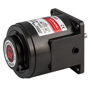 Separated Speed Control Motor