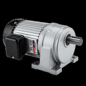 LH Horizontal Gear Motor