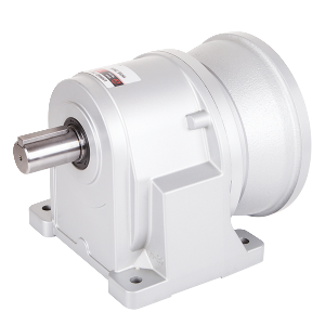 LHM Horizontal Reducer Motor Plug-In