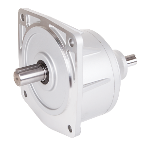 LVD Vertical Double Shaft Reducer